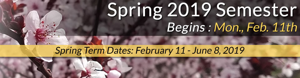 Spring 2019 Semester begins February 11, 2019. Spring term dates are February 11 to June 8, 2019.